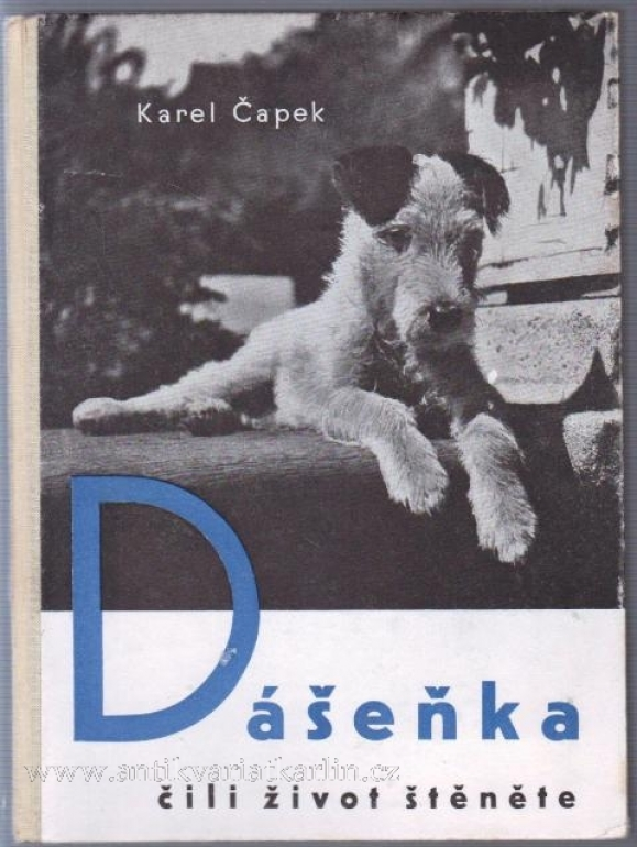 Dasenka: As a puppy sees the world (a book review)